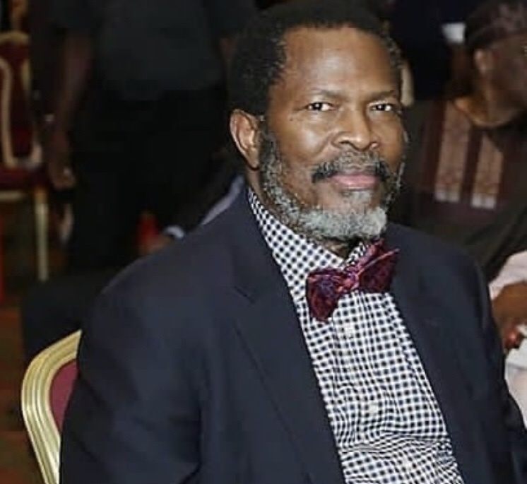 Arise TV founder, Nduka Obaigbena career and businesses