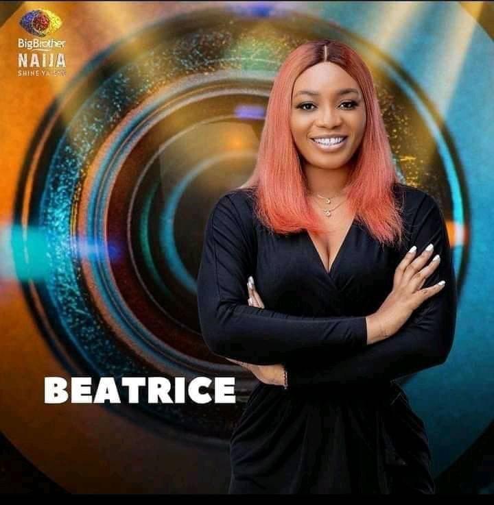 Beatrice BBNaija Career